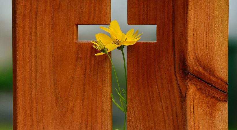 Graven er tom, Jesus lever! (Johannes 20,1-10)